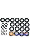 Ansmann Vapour RTR non RTR/kit 1/8th Buggy FULL Bearing Set - RCbearings