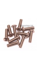 M3x10 Socket Button Stainless Steel Screws x10