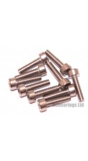 M3x12 Socket Cap Stainless Steel Screws x10