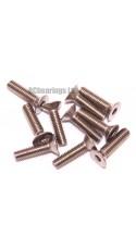 M3x12 Socket Countersunk Stainless Steel Screws x10