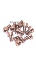 M3x5 Socket Cap Stainless Steel Screws x10