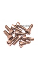 M3x8 Socket Cap Stainless Steel Screws x10