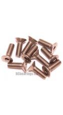 M4x12 Socket Countersunk Stainless Steel Screws x10