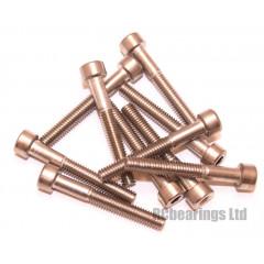 M4x30 Socket Cap Stainless Steel Screws x10