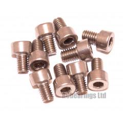 M4x6 Socket Cap Stainless Steel Screws x10