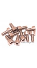 M4x8 Socket Cap Stainless Steel Screws x10